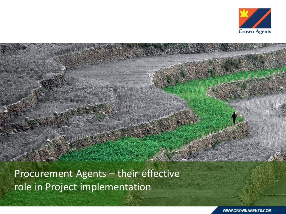 WWW.CROWNAGENTS.COM Procurement Agents – their effective role in Project implementation