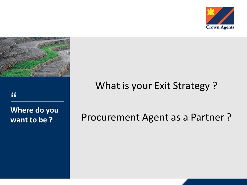 What is your Exit Strategy Procurement Agent as a Partner Where do you want to be