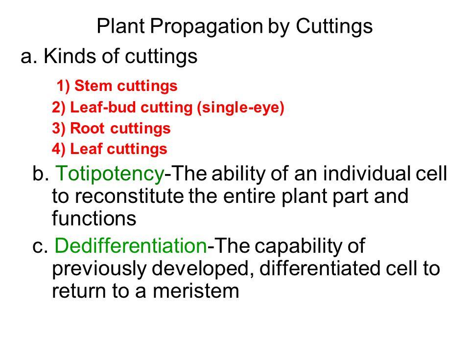 Plant Propagation by Cuttings 1.Stem cuttings 2. Leaf-bud cutting (single-eye) 3.