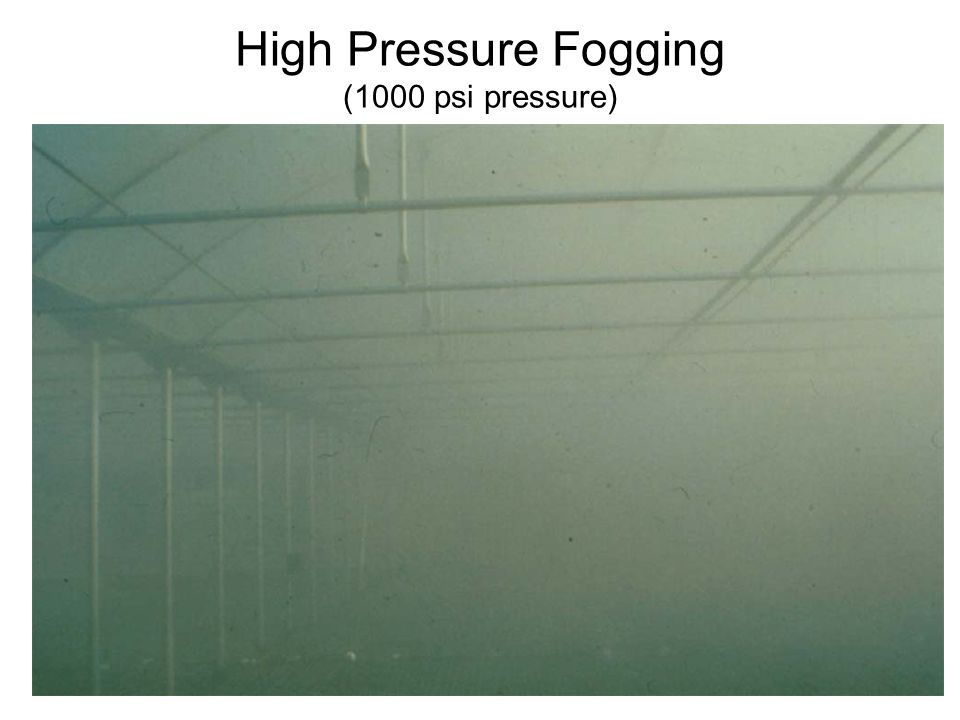 High Pressure Fogging (1000 psi pressure)