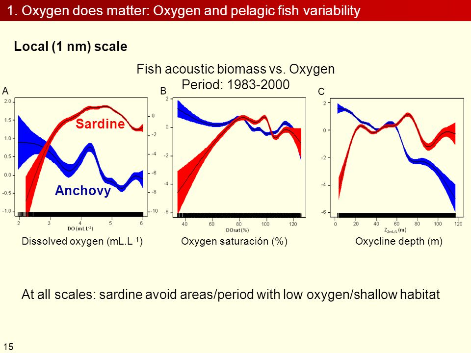 1. Oxygen does matter: Oxygen and pelagic fish variability Local (1 nm) scale Sardine Anchovy Dissolved oxygen (mL.L -1 )Oxygen saturación (%)Oxycline