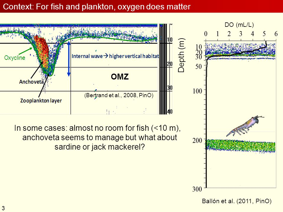 3 (Bertrand et al., 2008, PinO) Context: For fish and plankton, oxygen does matter In some cases: almost no room for fish (<10 m), anchoveta seems to
