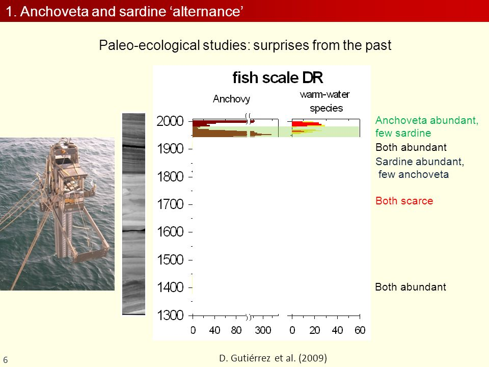 6 Paleo-ecological studies: surprises from the past D. Gutiérrez et al. (2009) Both abundant Both scarce Anchoveta abundant, few sardine Sardine abund
