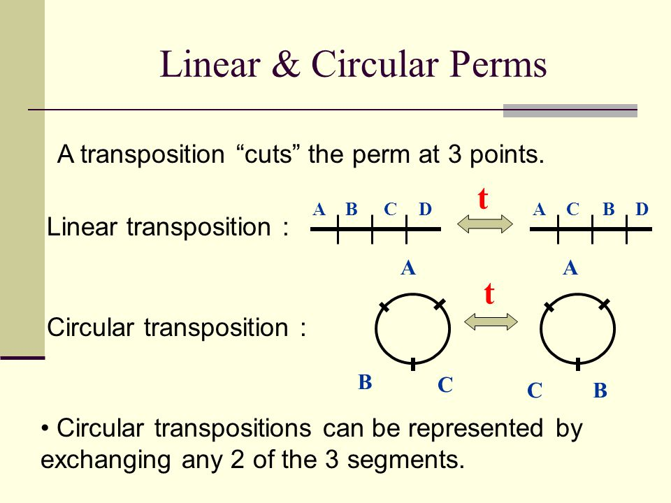 Linear & Circular Perms A B A C t BADCDBCA t B C Linear transposition : Circular transposition : Circular transpositions can be represented by exchang