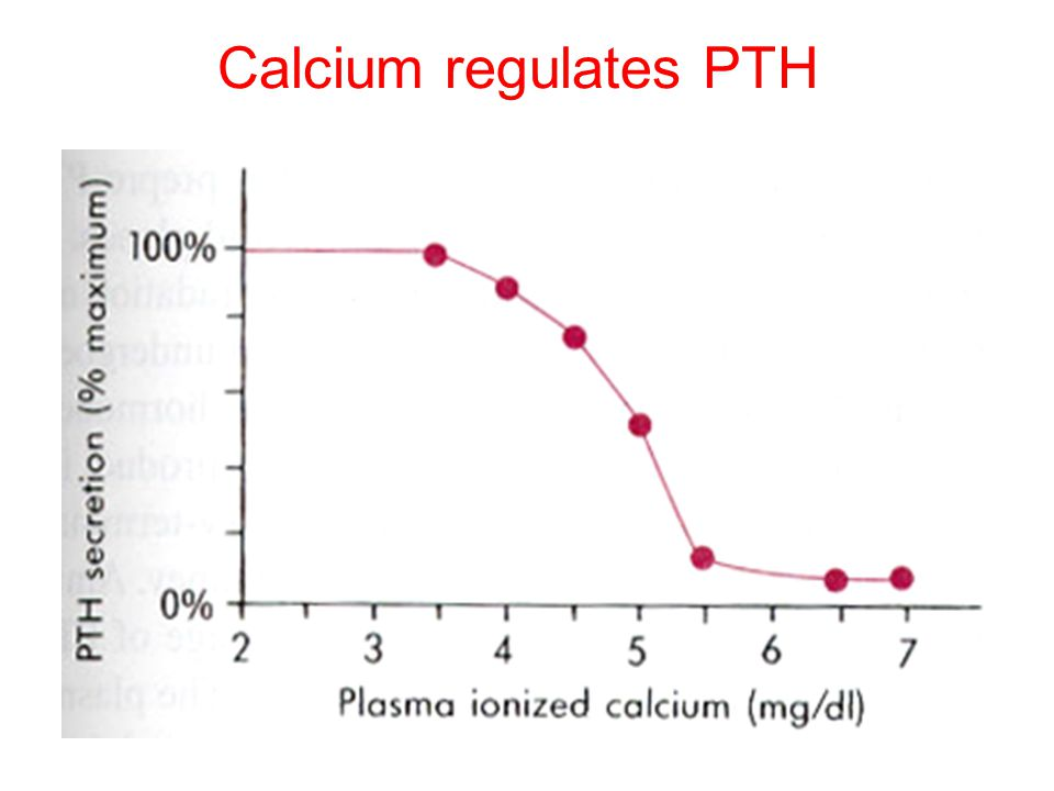 Regulation of PTH The dominant regulator of PTH is plasma Ca 2+. Secretion of PTH is inversely related to [Ca 2+ ]. Maximum secretion of PTH occurs at