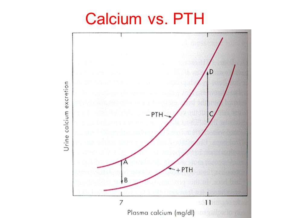PTH action The overall action of PTH is to increase plasma Ca ++ levels and decrease plasma phosphate levels. PTH acts directly on the bones to stimul