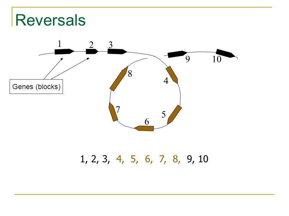 1 32 4 10 5 6 8 9 7 1, 2, 3, 4, 5, 6, 7, 8, 9, 10 Reversals Genes (blocks)