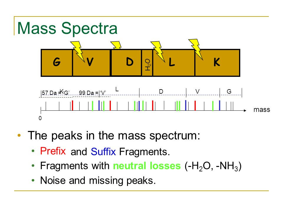 Mass Spectra GVDLK mass 0 57 Da = 'G' 99 Da = 'V' L K DVG The peaks in the mass spectrum: Prefix Fragments with neutral losses (-H 2 O, -NH 3 ) Noise and missing peaks.