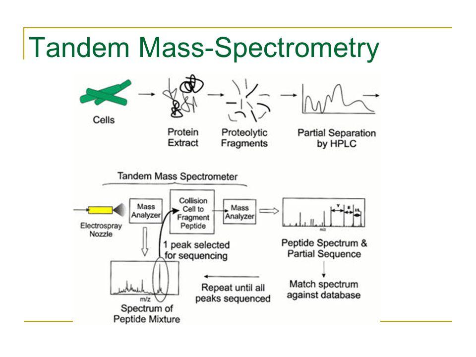 Tandem Mass-Spectrometry