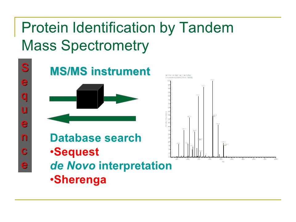 Protein Identification by Tandem Mass Spectrometry Sequence MS/MS instrument Database search Sequest de Novo interpretation Sherenga