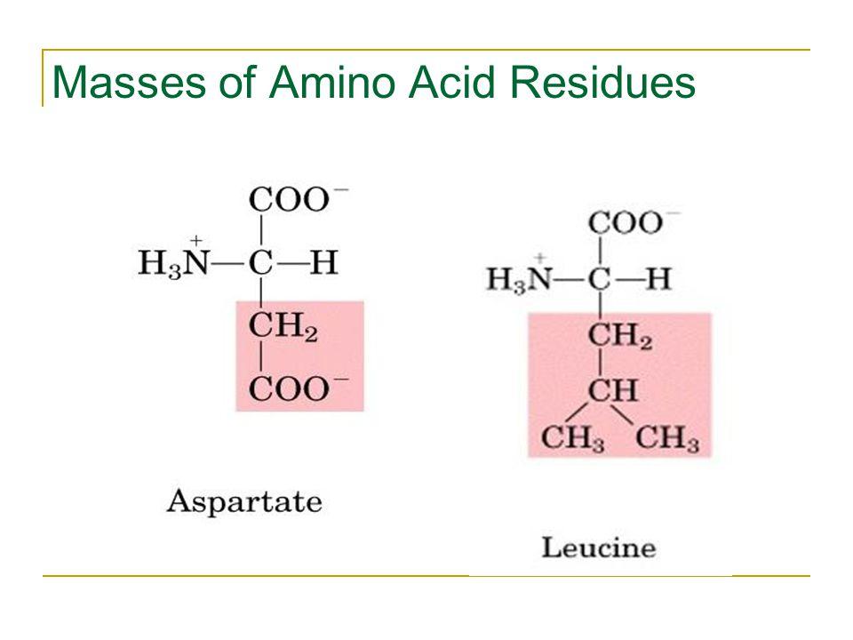 Masses of Amino Acid Residues
