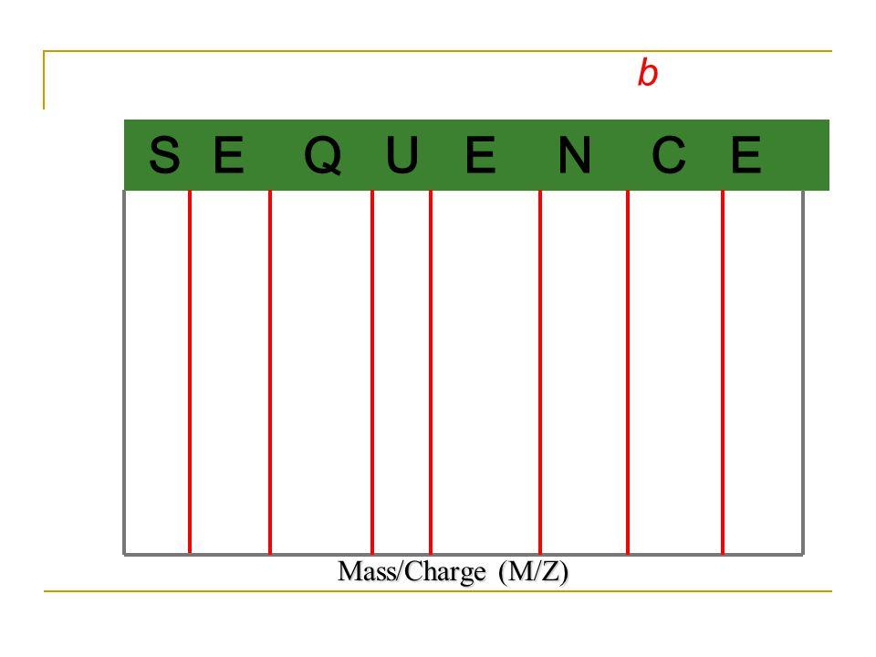 S E Q U E N C E b Mass/Charge (M/Z)
