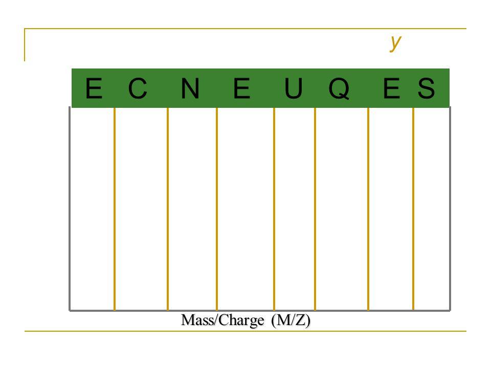 y Mass/Charge (M/Z) E C N E U Q E S