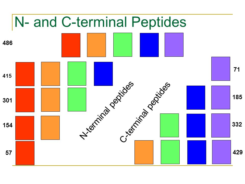 Peptide Sequencing Problem Goal: Find a peptide with maximal match between an experimental and theoretical spectrum.
