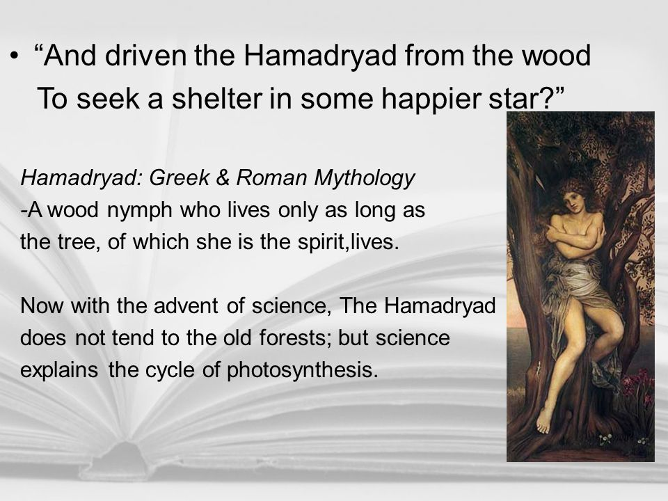 """""""And driven the Hamadryad from the wood To seek a shelter in some happier star?"""" Hamadryad: Greek & Roman Mythology -A wood nymph who lives only as lo"""