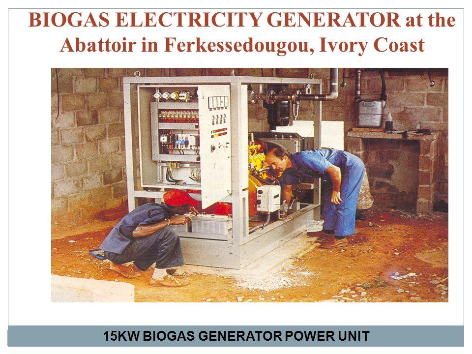 BIOGAS ELECTRICITY GENERATOR at the Abattoir in Ferkessedougou, Ivory Coast 15KW BIOGAS GENERATOR POWER UNIT