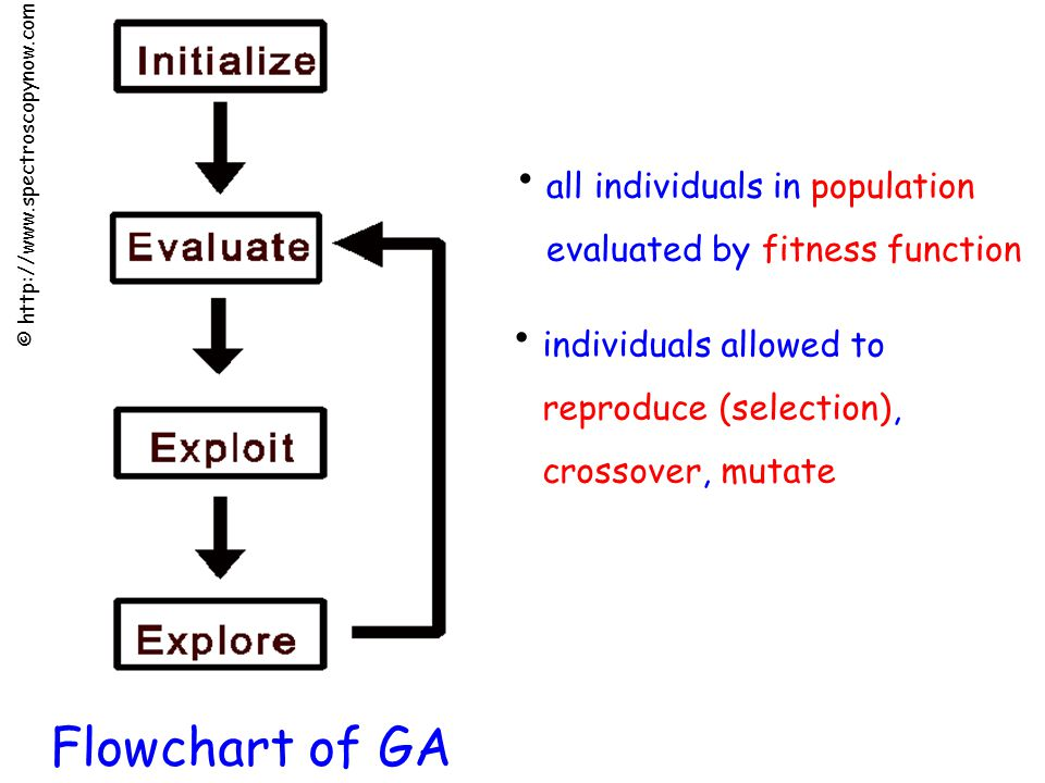 Flowchart of GA © http://www.spectroscopynow.com individuals allowed to reproduce (selection), crossover, mutate all individuals in population evaluated by fitness function