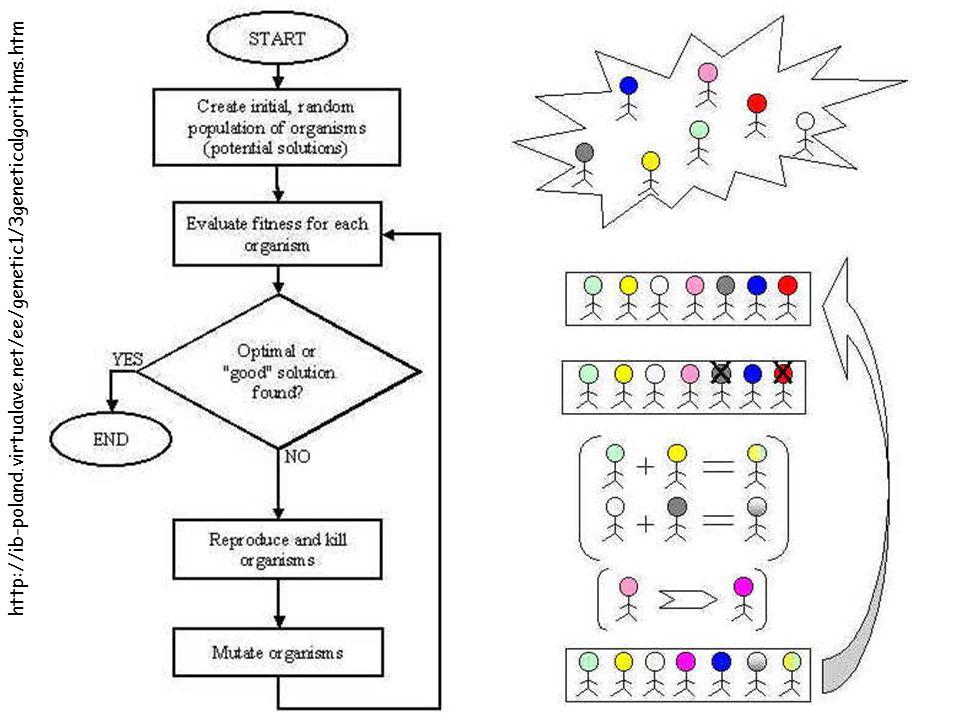 http://ib-poland.virtualave.net/ee/genetic1/3geneticalgorithms.htm