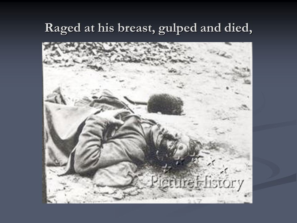 Raged at his breast, gulped and died,