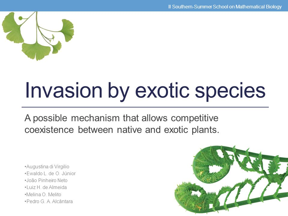 Invasions Native bumblebee Exotic bumblebee Native plants Resources consumption Disease transmission - - + Steals nectar II Southern-Summer School on Mathematical Biology