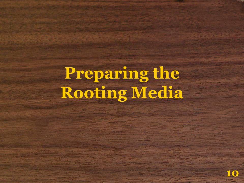 Preparing the Rooting Media 10