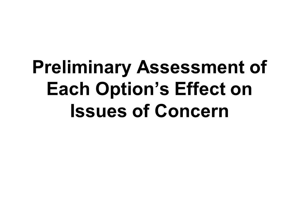 Preliminary Assessment of Each Option's Effect on Issues of Concern