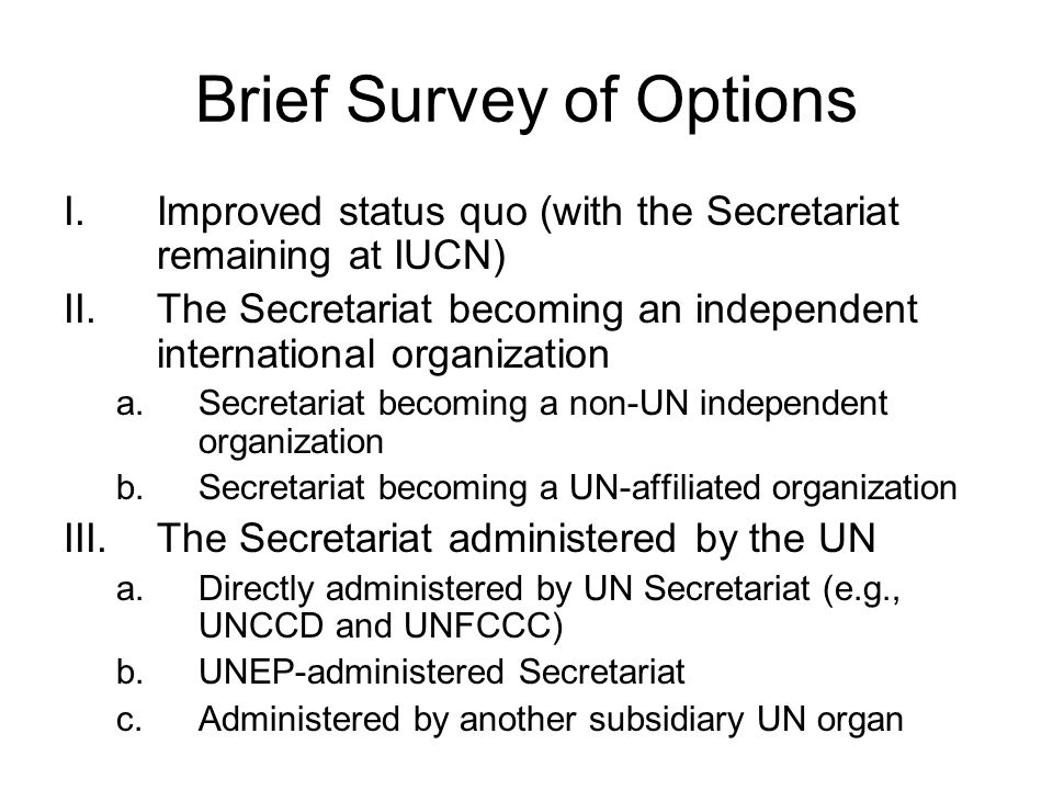 UN-Administered Secretariat UN would provide some financial services including banking, disbursements, and auditing; procurement and legal services; access to UN network of logistical and security assistance Many issues resolved –Travel visas and recognition at international meetings –Many staffing issues (UN privileges and immunities extended on a non-discriminatory basis) –IUCN-related issues would be solved Some issues regarding legal capacity may remain unresolved to the Secretariat's satisfaction Potential new issues –Transition of existing staff to UN system (inc.