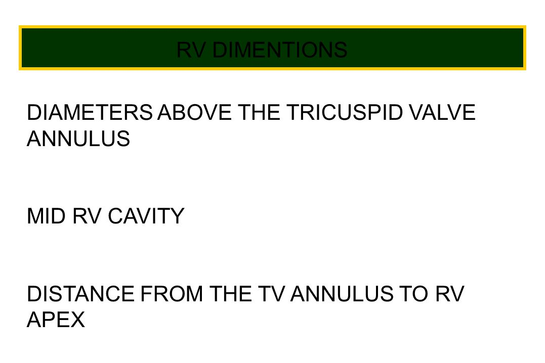 RV DIMENTIONS DIAMETERS ABOVE THE TRICUSPID VALVE ANNULUS MID RV CAVITY DISTANCE FROM THE TV ANNULUS TO RV APEX