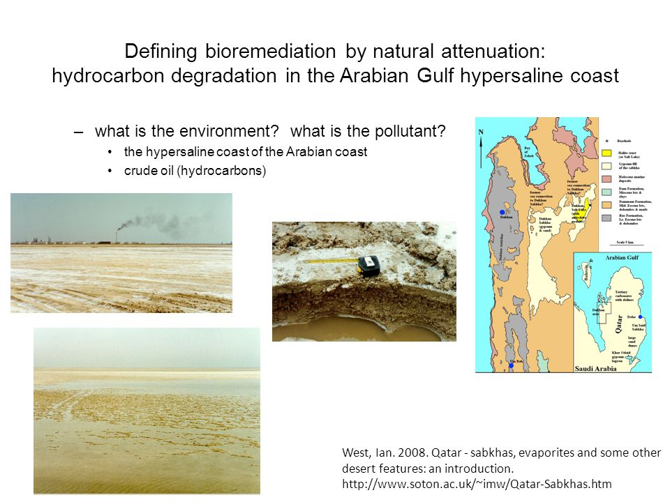 Defining bioremediation by natural attenuation: hydrocarbon degradation in the Arabian Gulf hypersaline coast –what is the environment.