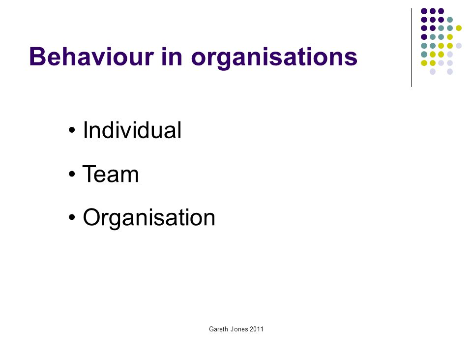 Gareth Jones 2011 Behaviour in organisations Individual Team Organisation