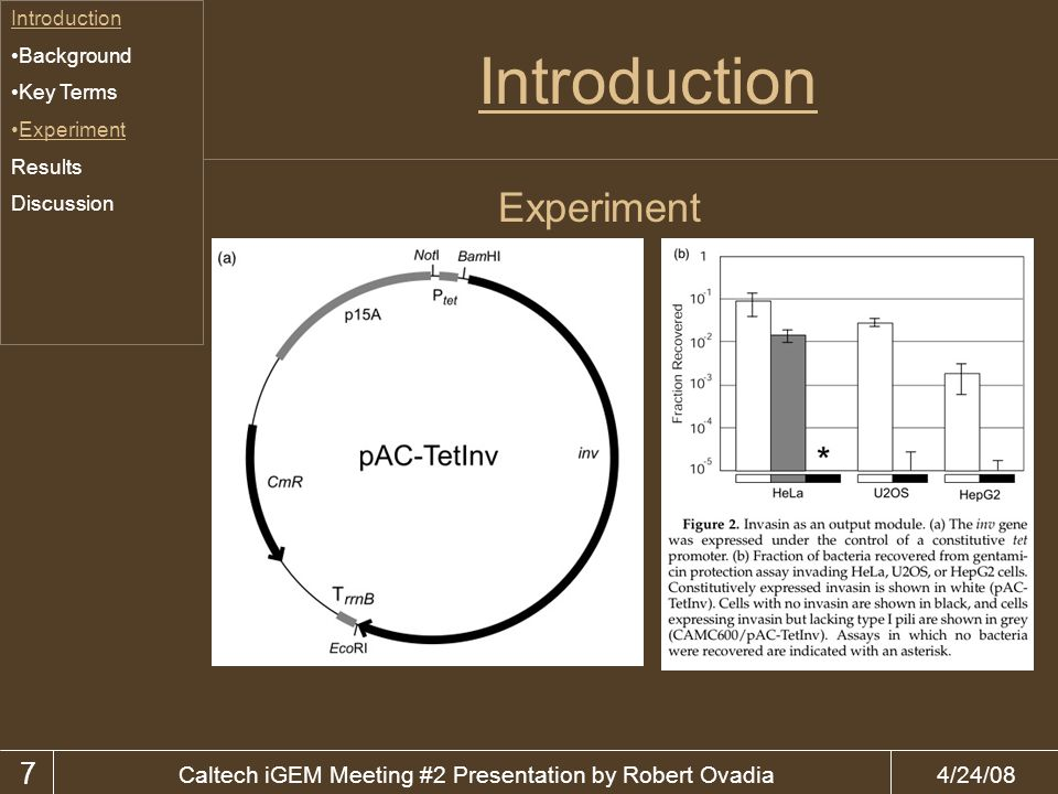 4/24/08Caltech iGEM Meeting #2 Presentation by Robert Ovadia Introduction Background Key Terms Experiment Results Discussion 7 Experiment