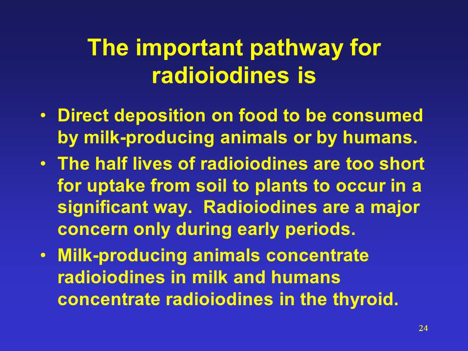 24 The important pathway for radioiodines is Direct deposition on food to be consumed by milk-producing animals or by humans. The half lives of radioi
