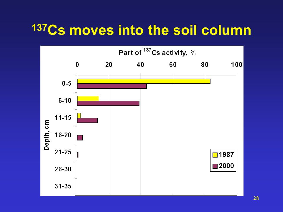28 137 Cs moves into the soil column