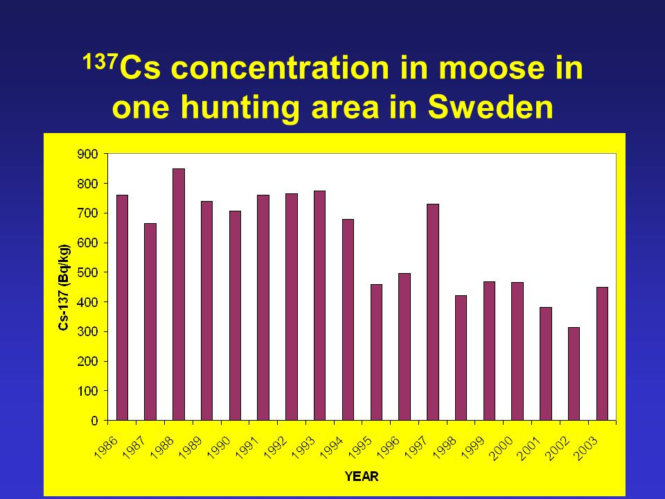 36 137 Cs concentration in moose in one hunting area in Sweden