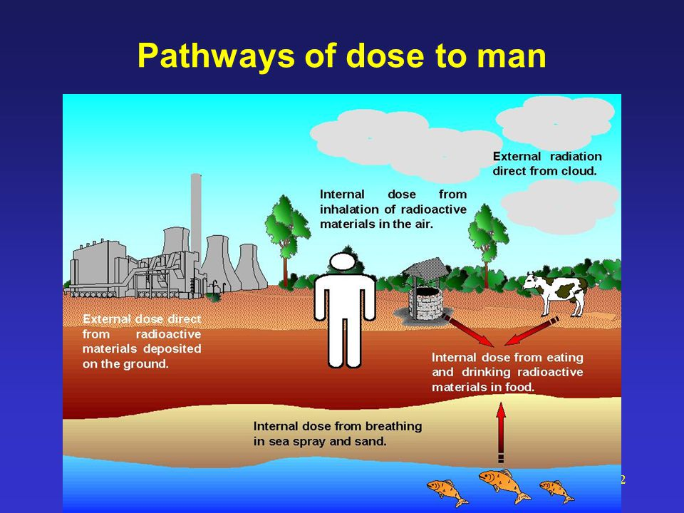 62 Pathways of dose to man