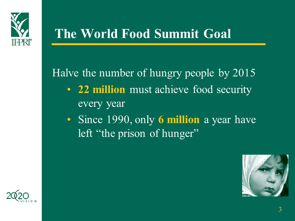 3 The World Food Summit Goal Halve the number of hungry people by 2015 22 million must achieve food security every year Since 1990, only 6 million a y