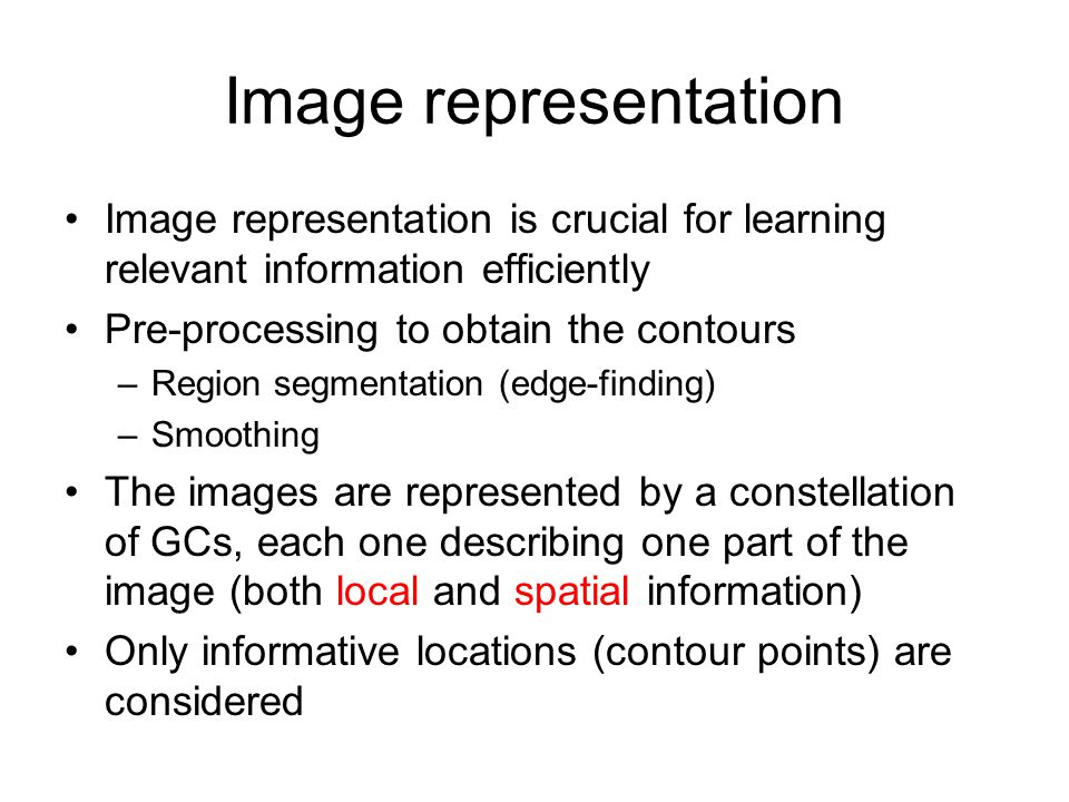Image representation Image representation is crucial for learning relevant information efficiently Pre-processing to obtain the contours –Region segme