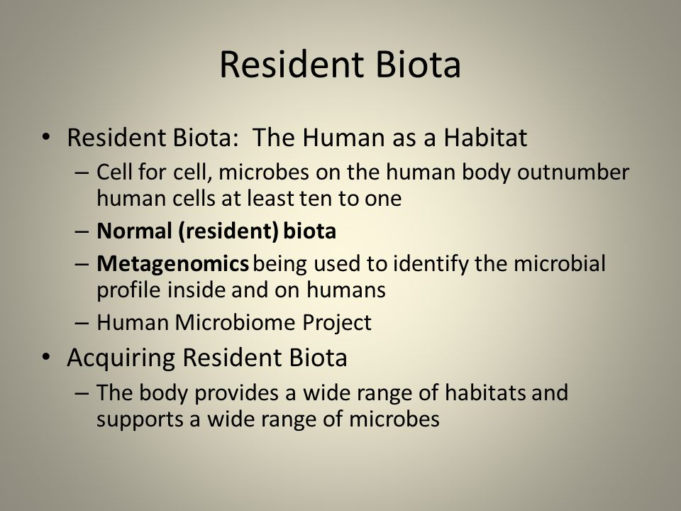 Resident Biota Resident Biota: The Human as a Habitat – Cell for cell, microbes on the human body outnumber human cells at least ten to one – Normal (