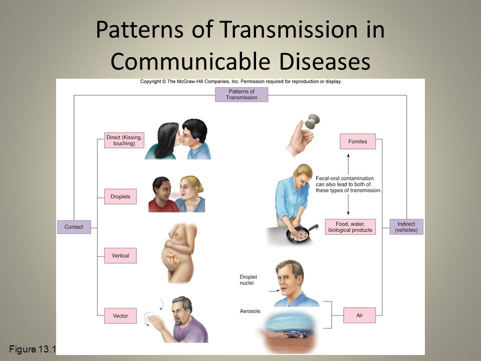 Patterns of Transmission in Communicable Diseases Figure 13.11