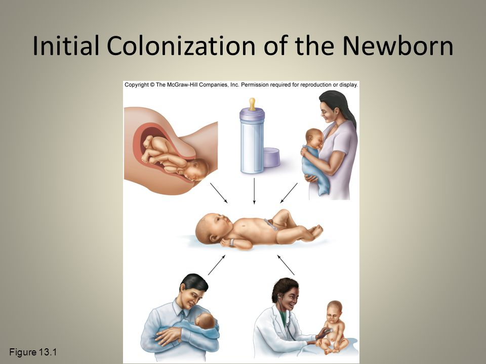 Initial Colonization of the Newborn Figure 13.1
