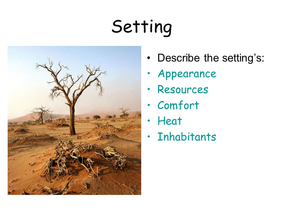 Setting Describe the setting's: Appearance Resources Comfort Heat Inhabitants