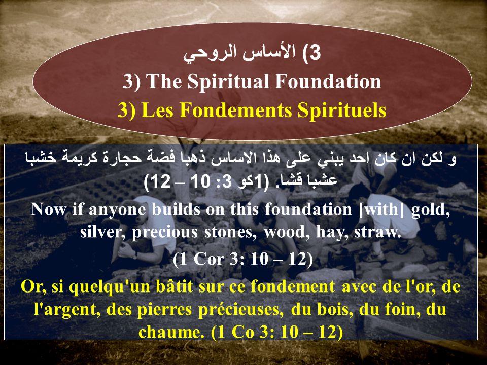و لكن ان كان احد يبني على هذا الاساس ذهبا فضة حجارة كريمة خشبا عشبا قشا.