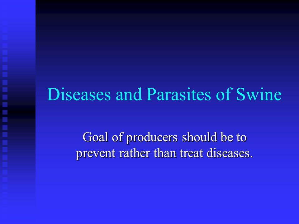 Causes of Swine Diseases Bacterial Bacterial Viral Viral Nutritional Nutritional Genetic Genetic Unknown Unknown