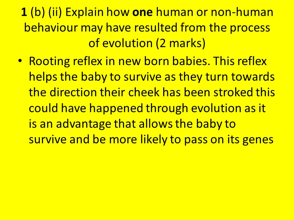1 (b) (ii) Explain how one human or non-human behaviour may have resulted from the process of evolution (2 marks) The rooting reflex.