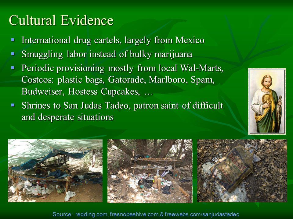 Cultural Evidence  International drug cartels, largely from Mexico  Smuggling labor instead of bulky marijuana  Periodic provisioning mostly from local Wal-Marts, Costcos: plastic bags, Gatorade, Marlboro, Spam, Budweiser, Hostess Cupcakes, …  Shrines to San Judas Tadeo, patron saint of difficult and desperate situations Source: redding.com, fresnobeehive.com,& freewebs.com/sanjudastadeo