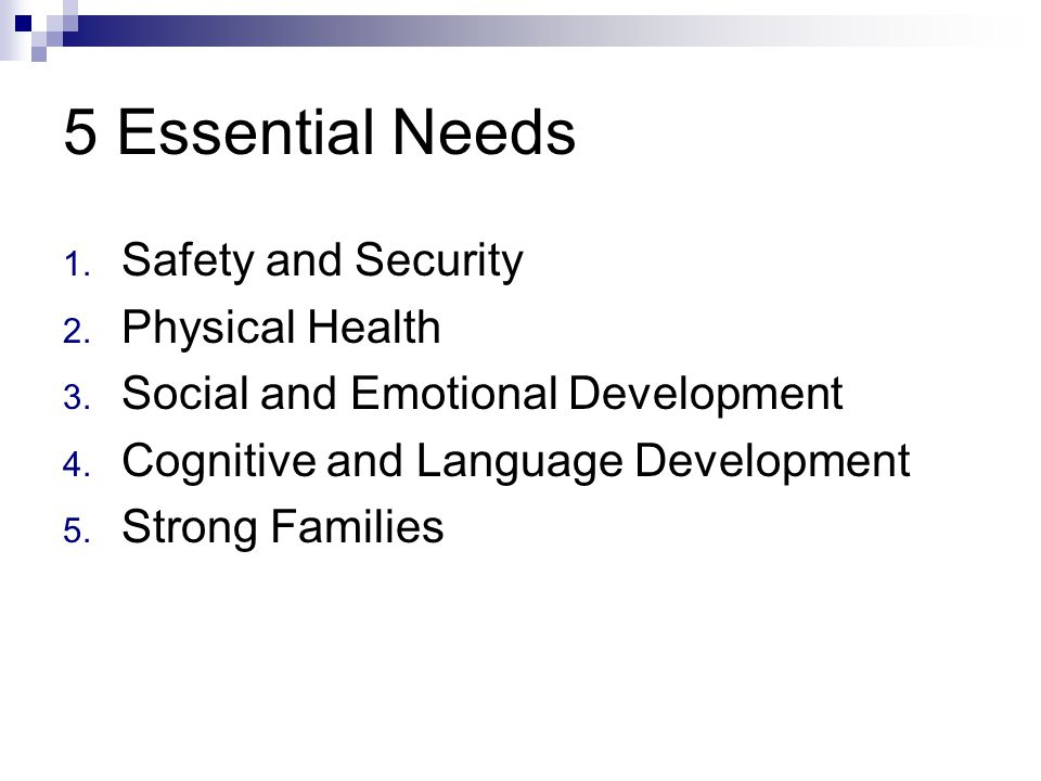 5 Essential Needs 1. Safety and Security 2. Physical Health 3.
