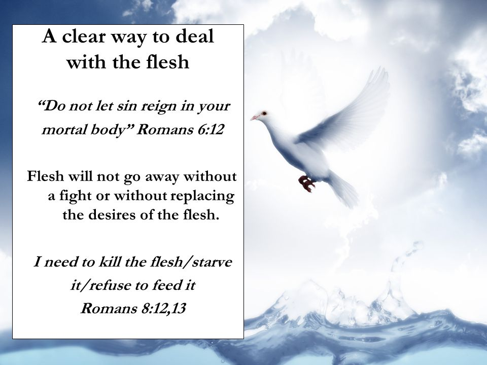 """A clear way to deal with the flesh """"Do not let sin reign in your mortal body"""" Romans 6:12 Flesh will not go away without a fight or without replacing"""