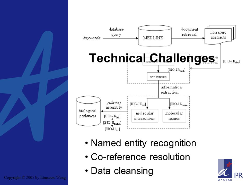 Copyright © 2005 by Limsoon Wong Technical Challenges Named entity recognition Co-reference resolution Data cleansing