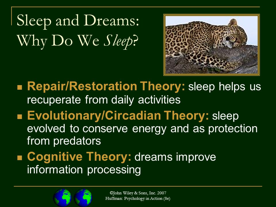 ©John Wiley & Sons, Inc. 2007 Huffman: Psychology in Action (8e) Sleep and Dreams: Why Do We Sleep.