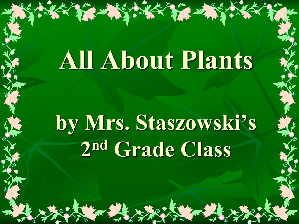 All About Plants by Mrs. Staszowski's 2 nd Grade Class
